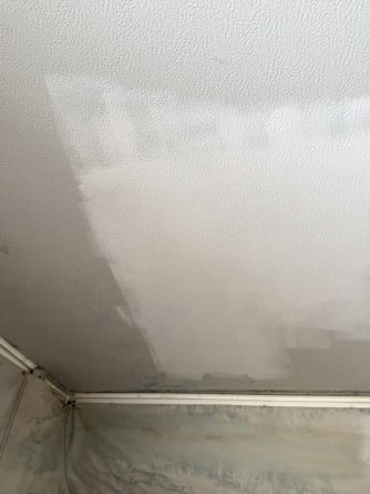 fresh ceiling